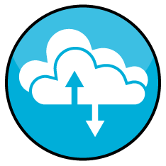 Cloud/Managed Services